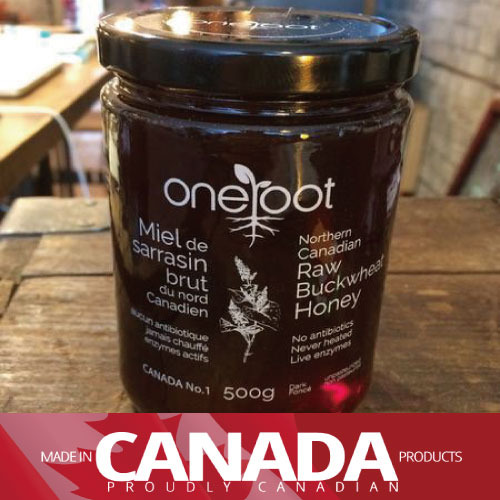 [꿀] ONEROOT CANADIAN HONEY